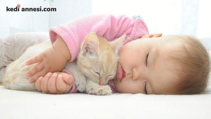 kedi-sahiplenme-kedi-sahiplenmek-kedi-ve-bebek